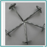 Galvanized iron umbrella head roofing nails