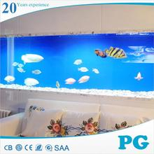 PG fantastic live tropical fish