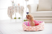 covered sofa bed luxury pet dog dry beds