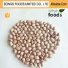 light speckled kidney beans type bulk beans
