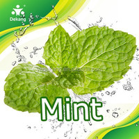 Dekang Most Wanted Flavor- Mint 2014