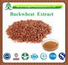 100% Natural Tartary Buckwheat Extract 10% 20% 30% 20:1