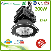 300w enviromentally friendly china sex hot sale led high bay with ce rohs