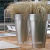 /p-detail/m%C3%A1xima-calidad-flor-precio-olla-300005941815.html