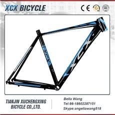 Road bike frame.jpg