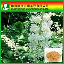 Top Quality Gotu Kola Extract /10%-90% Triterpenoid Saponis/triterpenoides Saponis/High Quality Gotu Kola Extract
