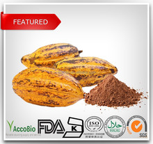 High Quality 100% Nature Cocoa Extract 20% Bulk Powder