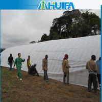 Small Size Plastic Galvanized Steel Cover Material Greenhouse Design