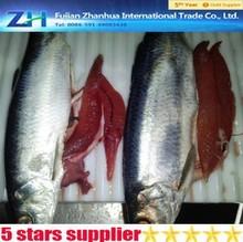 Whole round frozen mackerel best price scomber japonicus