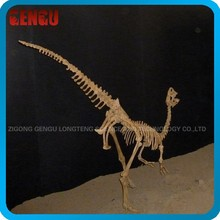 Petit dinosaure dinos squelette équipement de parc d'attractions
