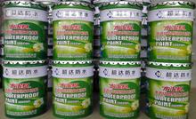 Penetration Concrete Sealer Capillary Water-based Paint