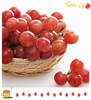 Fresh grape red grape sweet grape in high quality for wine