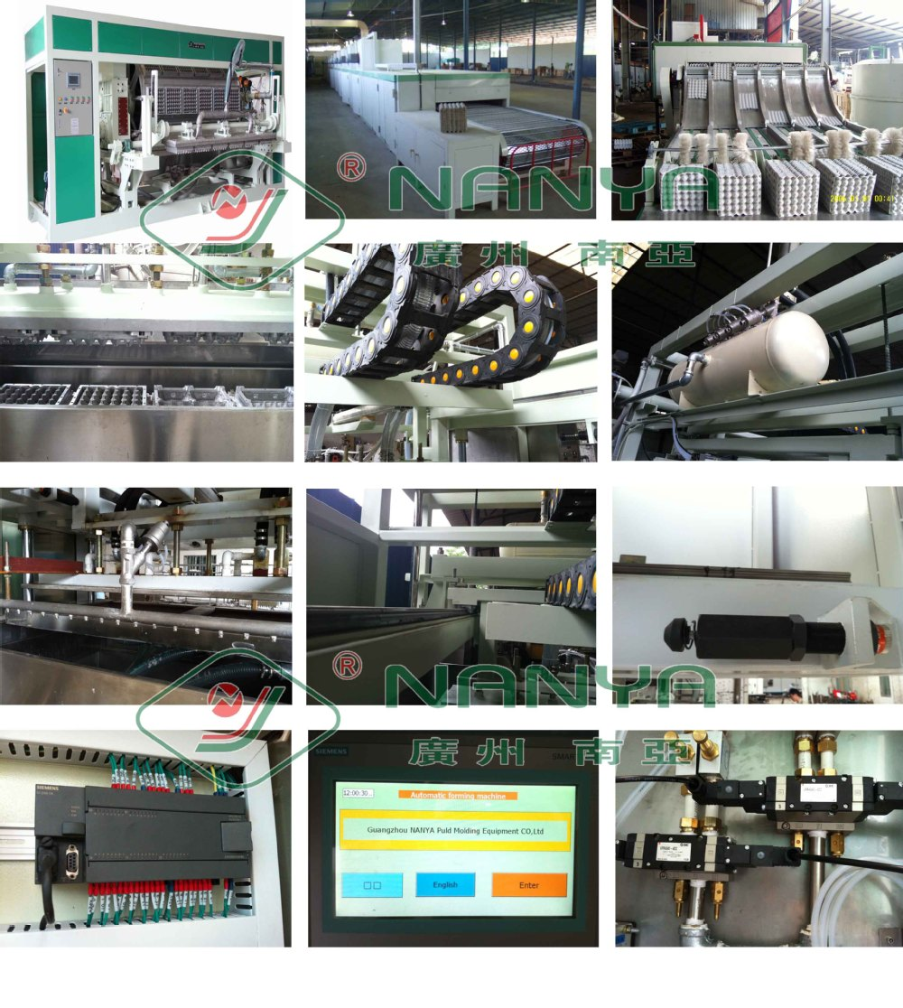 Poultry farm paper egg tray machine for packing the chicken egg