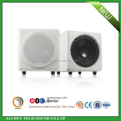 High quality dual voice coil white paper cone 500W 10 inch Subwoofer