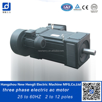 NHL best selling induction three phase electrical ac motor