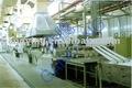 Reciclagem de poliéster fibra de grampo de linha de produção ( psf )