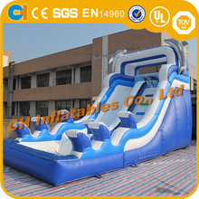 Dolphins Inflatable slide with pool, inflatable blue slide, inflatable slide with basketball hoop
