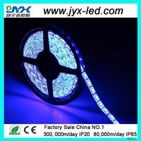 IP68 60SMD FL3528 12VDC waterproof LED lighting strip