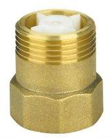 nozzle check valve