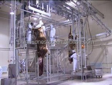 300 cattle slaughtering and deboning line