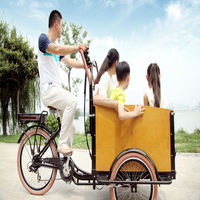 hot sale danish family three wheel cheap electric motor tricycle cargo bike