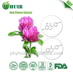 Red Clover Extract 20% Isoflavones powder