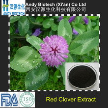 10 Years Gold Supplier Red Clover Powder Extract 8.0% Total Isoflavone