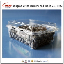 Factory Price High Quality 500g Plastic Fruit Tray Disposable Packaging Container
