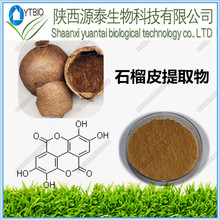 100% natural professional manufacture pomegranate peel extract for Anti-cancer