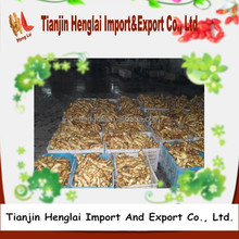 market prices for ginger buyers wholesale ginger 1