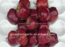 juicy red huaniu apple