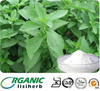 Pure Stevia leaf extract steviol glycosides 98% powder in bulk