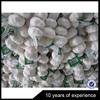 Latest Arrival OEM Design customized printed vegetable fruit mesh bag wholesale from manufacturer