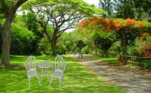 Butterfly die cast aluminum outdoor modern leisure patio garden/backyard/balcony/lawn/porch furniture armchair Italian table set