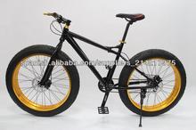 Bicicletas de ruedas grandes para la venta