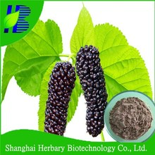 High quality Dehydrated mulberry juice powder for Energy drink