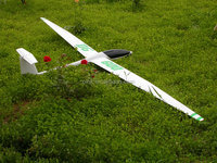 Fly rc hobby toy DG600 giant scale rc airplane glider airplane carbon fiber made rc glider DG600