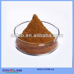 Factory Supply Fruit of Barbary Wolfberry Powder/Goji/Wolfberry