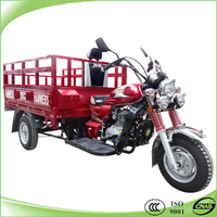 Popular cargo china eec 250cc trike for sale