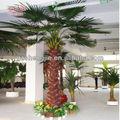 Todos os tipos de palmeiras, outdoor artificial palmeiras