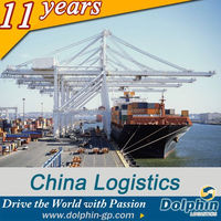 shipping company to saudia very cheap freight cost for tire