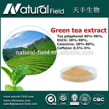 Advanced detecting instruments processing top sale high quality green tea extract manufacturer