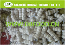 2015 Chinese Fresh Garlic White For Sale 5.0CM 10KG Carton/Mesh Bag