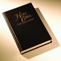 nvi mini santa biblia en español