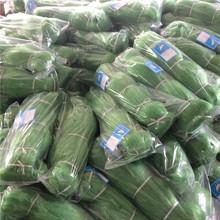 Factory Price Nylon Fish Net