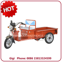 Hot sale 20Ah48V 650W three wheel electric motor for cargo tricycle