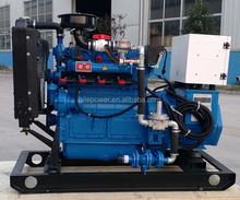 high quality and hot sale!open and silent type small natural gas (NG) /wood gas generator with CHP system