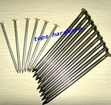 factory !!Common Iron Nails / galvanized or polished common nails