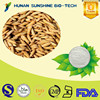 CAS 1135-24-6 98% Rice Bran Oil Extract Ferulic Acid Powder as Pharmaceutical Ingredients