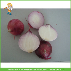 Low Price Red Onion Delicious Fresh Shallot Onion